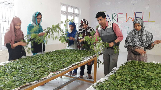 Professor Shamim Banday with Students of Sericulture