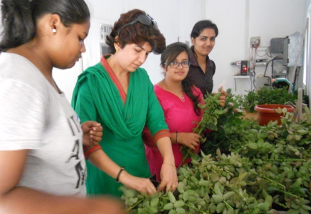 Dr Alka Singh - Students trained under Experiential Learning Program on different aspects of floriculture 1